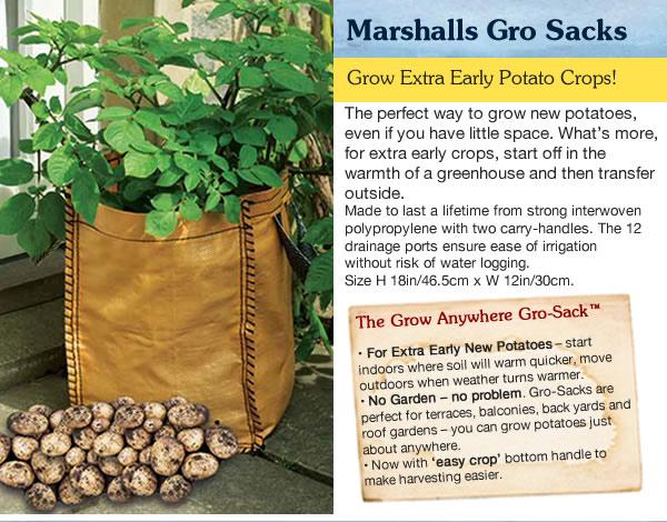 Growing Potatoes In Bags Potato Grow Bags Amp Sacks